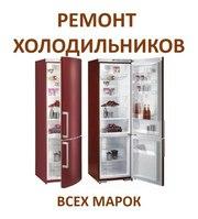 Срочный ремонт холодильников в Минске и Минском районе.Звоните